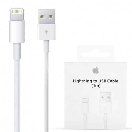Apple Lightning to USB Cable (1 m)